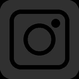 Instagram Mobile Icon